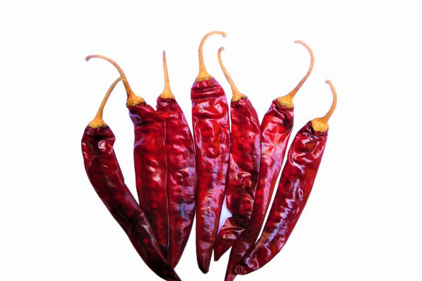 341 dry red chilli exporter in guntur